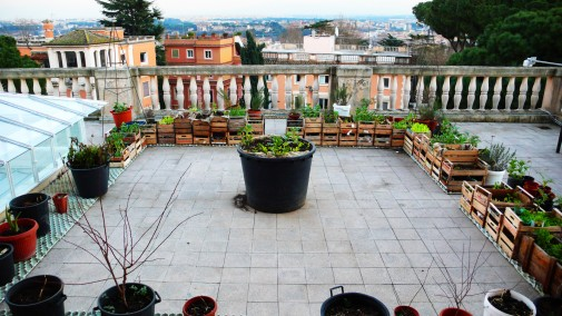 1069 Edible Estates Rooftop Terrace Rome e P
